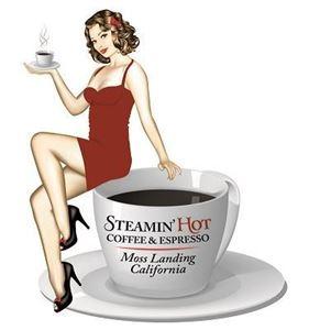 steamin_logo